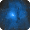 IC4604 - Rho Ophiuchi,                                Tim Hutchison