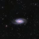 NGC 2903 Close to  Leo Constellation,                                  Fernando