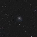 M101 e dintorni,                                Domenico De Luca