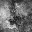 Cygnus hydrogen clouds,                                Jeff Bottman