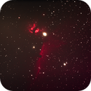 NGC 2024 und IC 434,                                Silkanni Forrer