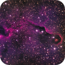 IC1396 - protostars in the trunk,                                Tom Gray