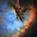 NGC 281,                                Gary Lopez