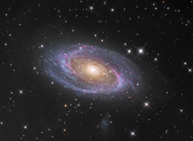 Bode's Galaxy M81,                                Wissam Ayoub