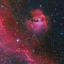 IC 2177 Region - The Seagull Nebula,                                Min Xie