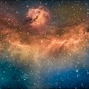 Seagull Nebula in narrowband,                                Mike