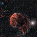 IC 443 - The Jellyfish Nebula,                                Samuel Khodari
