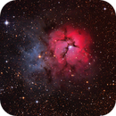 Triffid Nebula,                                Joel Brewer