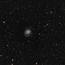 Messier 101,                                Dominik Ball
