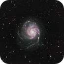 M101,NGC 5457,The Pinwheel Galaxy (Trial and Error),                                Tam Rich