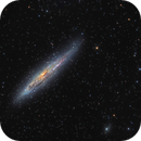 NGC 4945 - Chilescope N,                    Vadim Kozatchenko