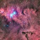 Cone Nebula,                                Miles Zhou