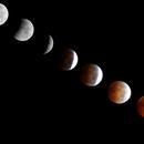 Total Lunar Eclipse Oct 8, 2014,                                Shailesh Trivedi