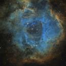 Rosette Nebula,                                jeff2011