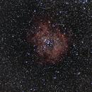 C49 - The Rosette Nebula,                                Mattes