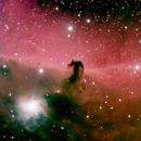 Horse head nebula,                                  BOB