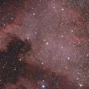 North America Nebula,                                Michael Leung