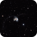 Antenna Galaxies,                                Richard S. Wright Jr.