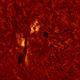 2020.06.06 Sun AR12765 H-Alpha,                                Vladimir