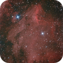 IC 5070,                                Maura Ingrosso
