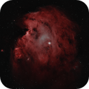 The Monkey Head Nebula,                                404timc