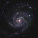Pinwheel Galaxy & Friends,                                Mark Germani