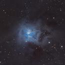 The Iris Nebula,                                Gabe Shaughnessy