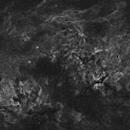 Cygnus Wide Field,                                Marco van der Kooij