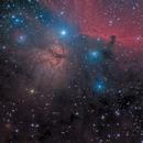 M42+IC434,                                Thieulletc