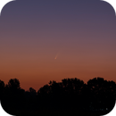 NEOWISE F3,                                Frigeri Massimiliano