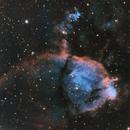 IC 1795 Fish Head Nebula,                                  Wilsmaboy
