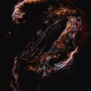 Cygnus Loop - Color Splash!,                                Min Xie