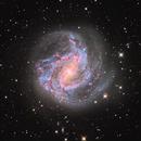 M83,  Southern Pinwheel Galaxy,                                Annette & Holger