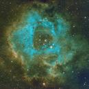NGC2244,                                Frank Bogaerts