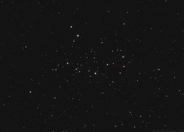 NGC 1342,                                Gary Imm