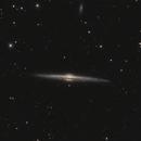 NGC4565 C11 F@1700mm, normandy backyard,                                cv14