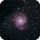 M74,                                David Redwine