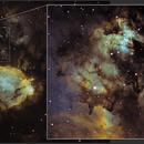 IC 1795, The Fishhead Nebula,                                  Ruben Barbosa