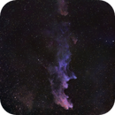 The Witch Head Nebula - IC 2118,                                David McGarvey