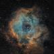 Rosette Nebula,                                  jlangston_astro