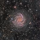 Fireworks Galaxy (Full Frame with Dust),                                KuriousGeorge