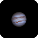 Jupiter,                                Michael Caligiuri