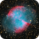 M27 Annotated,                                sunlover