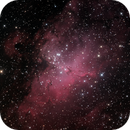 The Eagle Nebula,                                  Nicholas Jones