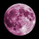 Super Pink Moon,                                drivingcat