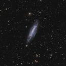 NGC4236 HaLRGB,                                Sergiy_Vakulenko