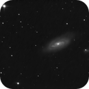 Messier 90,                                Chris Lasley