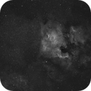 The North America Nebula and The Pelican Nebula,                                  Marta Seidler
