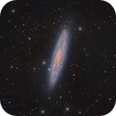 NGC 253 The Sculptor Galaxy,                                Michael Feigenbaum