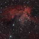 NGC7380 - Wizard Nebula,                                Steve Benesko